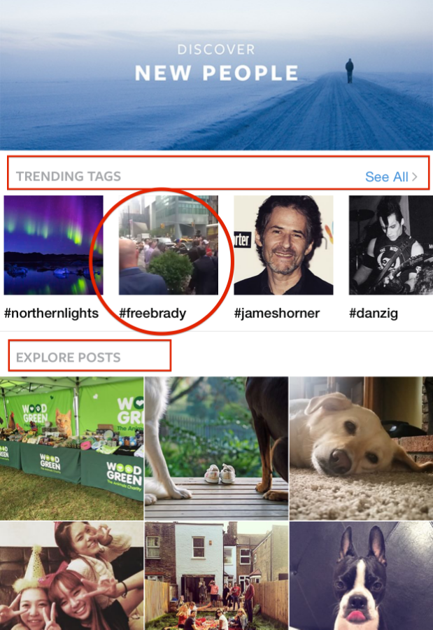 Instagram search and explore feature