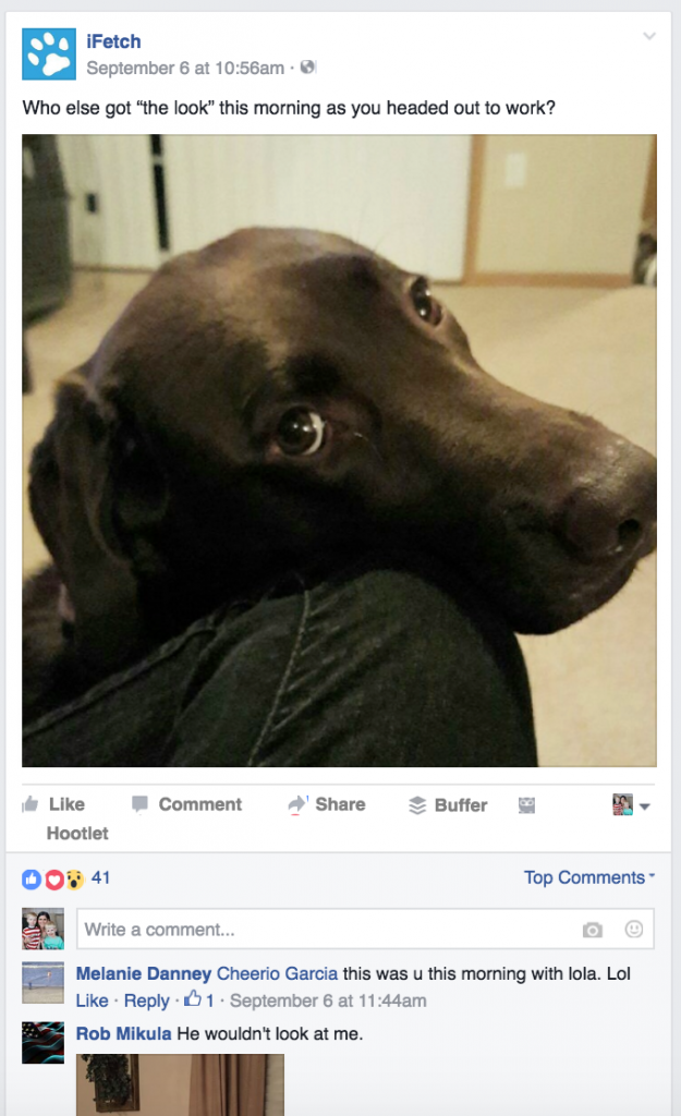 Facebook post for iFetch