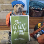 #OptOutside_CWD Video