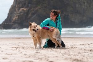 girl and her dog on the beach with the wind blowing