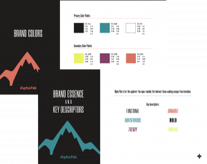 Defining a Brand: Alpha Pak Style Guide, brand colors and descriptors