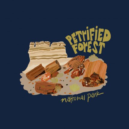 petrified-forest-copy